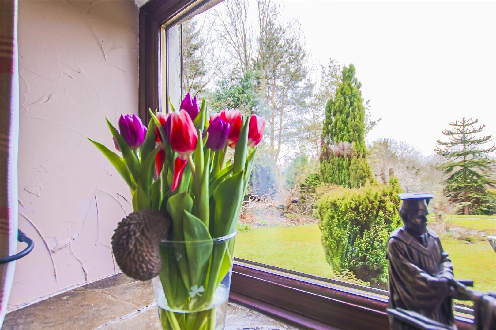 3 Bedroom Terraced Cottage For Sale - Image 25